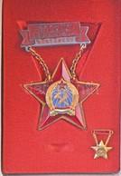 1955. 'A Szakma Kiváló Műszaki Dolgozója - Bányászat' Zománcozott Jelvény és Miniatűr Rákosi-címeres Dísztokban, Viselés - Unclassified