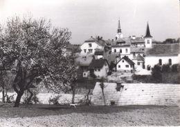 1244   AK--  SLOVENIJA  CRNOMELJ - Slovenia