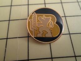 Pin812g Pin's Pins / Rare Et De Belle Qualité !!! MARQUES : LION DES FLANDRES EPI DE BLE LETTRE B MAJUSCULE - Trademarks
