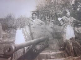WW2-1er Bataillon 4ème Zouaves-1942 Photo Militaire Guerre,En Manœuvre En Tunisie Photographie Originale S.P. 88994 - War, Military