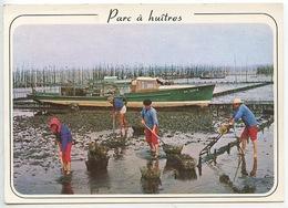 Ostréiculture : Parcs à Huitres Travaux Ostréicoles Ramassage Des Huitres Bassin D'Arcachon (n°7471 Cp Vierge) - Pesca
