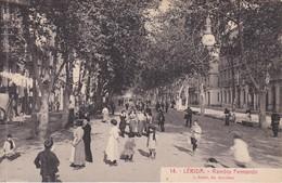 14 POSTAL DE LERIDA DE LA RAMBLA FERNANDO (L. ROISIN) (LLEIDA) - Lérida