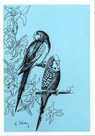HUGUETTE SAINSON   OISEAUX  -  EDITEE PAR LES AMIS DES OISEAUX DE L ORLEANAIS  ORLEANS - Illustratoren & Fotografen