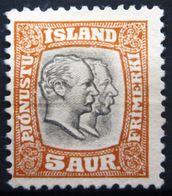 ISLANDE              N° 26                   NEUF SANS GOMME - 1873-1918 Danish Dependence