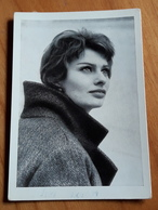 SOPHIA LOREN Wunderschöne Portrait-Foto-Aufnahme - Altes Original-Sammelbild (ca. 6,5 X 9,5 Cm) - 180743 - Photographs