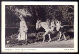 Motivo Algarvio (Montanheira) Mulher Com Burro E Potes De Agua - Old Postcard Donkey Water Carrier ALGARVE / PORTUGAL - Faro