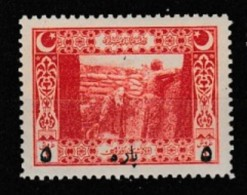 (OS) 1917 Ottoman 5p / 1k Surcharged Postage Stamp MNH** - 1858-1921 Ottoman Empire