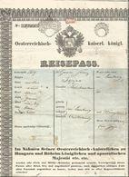 Austria-Hungary Österreich Ukraine 1849 Lemberg Lviv 2 Sheets! Passport Reisepass Visas Munich Border Stamps - Historical Documents