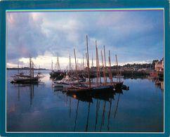 SINAGOS AU MOUILLAGE SINAGOT MORBIHAN 56 - Pesca