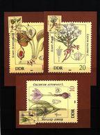 Deutschland / Germany DDR 1982 Giftpflanzen Michel 2691-96 Maximumcards - Toxic Plants