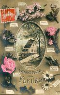 LANGAGE DES FLEURS - Flowers