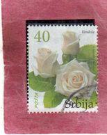 SERBIA SRBIJA SERBIE 2007 FLORA FLOWERS FIORI FLEURS ROSE VENDELA FLOWER FIORE DIN 40d USATO USED OBLITERE' - Serbia