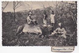 PHOTO KENYA TANGANYKA Chasse - Kenya