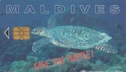 TELECARTE  MALDIVE...(TORTUE) - Maldives