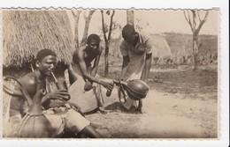 PHOTO KENYA Vanika Buvant Tambo - Kenya