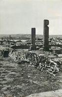 D1129 Turnu Severin Roman Castrum Ruins Equestrianism Stamp - Roumanie