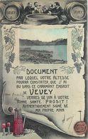 VEVEY - Carte Humoristique Sur Le Vin. - VD Vaud