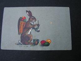Osterhase , Klaus Chocolat   Bug - Ostern