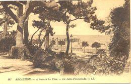 France - Gironde - Arcachon - A Travers Les Pins - La Jetée Promenade - Levy Neurdein Nº 181 - 4688 - Arcachon