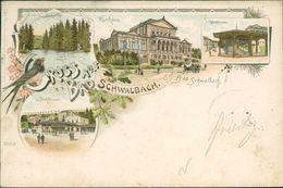AK Bad Schwalbach, Gruss Aus Litho, O 1898 Bahnpost Wiesbaden-Diez (29094) - Bad Schwalbach