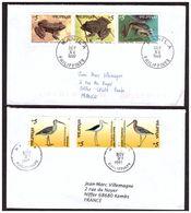 2 Lettres Des PHILIPINES 1 Avec Echassiers Et L'autre Avec Des Grenouilles - Storchenvögel