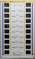LESTRADE :  56469  BRETAGNE : AURAY-LE-BONO - Stereoscopi