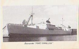 """Bananier        591       Bananier  """" Fort Carillon """" - Commerce"""