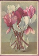 AK ,Künstlerkarte,Voor Het Kind,Blumen ,Stilleben, Cyclamen,J.Voerman - Pays-Bas