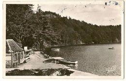 Lac Pavin - Entrée Du Chemin Sous Bois - L'AUVERGNE - Auvergne