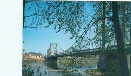 Les Rosiers Sur Loire -  La Loire Et Le Pont   Y1591 - Francia