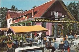 69626- POIANA BRASOV THE HUNTER HOTEL RESTAURANT - Hotels & Gaststätten