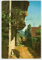 PAESAGGIO  RUPESTRE  DA  IDENTIFICARE    (NUOVA) - Cartoline