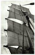PASSAT    +- 21 * 14 CM  REAL PHOTOGRAPH BOAT BARCO  BOAT Voilier - Velero - Sailboat - Barche