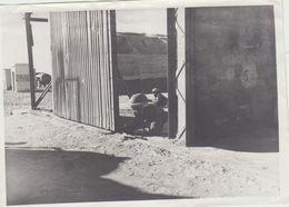 Photo Guerre Militaires  Alger  Aerodrome De Biskra Protection D Un Terrain D Aviation - Guerre, Militaire