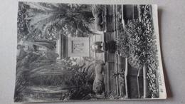 AJACCIO - Statue De Napoléon. - Ajaccio