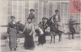 BELLEME - Laitières Bellémoises - TBE - France