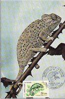 Carte Maximum  Cameleon Reunion 1971. - Reptiles & Batraciens