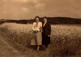 Grande Photo Originale Portrait D'une Mère Et De Sa Fille Dans Un Champs De Colza Vers 1950 - Personnes Identifiées