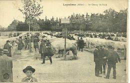 LOT DE 50 CARTES POSTALES TOUTES SCANEES RECTO/VERSO (lot N° 81) - Postcards