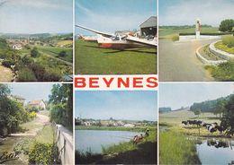 CPA - CPSM - 78 - BEYNES - Multi Vues - GF.11507 - Beynes