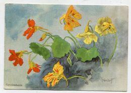 PAINTING / ART - AK 316634 Ernst Kreidolf - Kapuzinerkresse (Aquarell) - Peintures & Tableaux