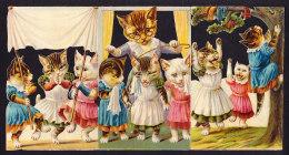 Grand CHROMO DECOUPIS Gaufré  Ancien (XIX°s) Grand Format 22x11.5cm  Chats Humanisés  Victorian Die-cut Personnifiés - Autres