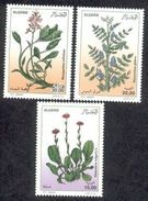 Année 2012-N°1638/1640 Neufs**MNH : Plantes Médicinales - Algeria (1962-...)