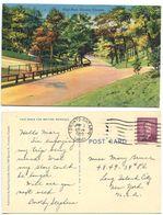 Canada 1950 Postcard High Park, Toronto To Long Island City NY, Scott 299 Coil - Toronto