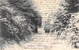 OVERYSSCHE - Chemin Creux - Overijse