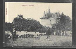 36  Bagneux Le Château - Castles