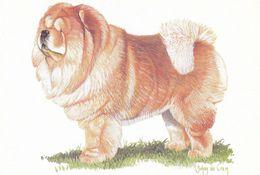 Chow Chow - Dog - Chien - Cane - Hund - Hond - Perro - Hunde