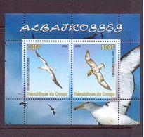 C ONGO 2008 OISEAUX   YVERT N°   NEUF MNH** - Marine Web-footed Birds