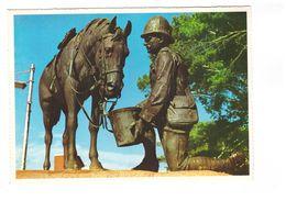 Afrique Du Sud Port Elizabeth Horse Memorial War Anglo Boer Monument Mémoire Chevaux Morts Cheval South Africa CPSM GF - South Africa