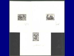 Qualité: EPA – 263/65, 3 épreuves D'artiste En Noir, Signées: Fleurs De Lotus . - Laos